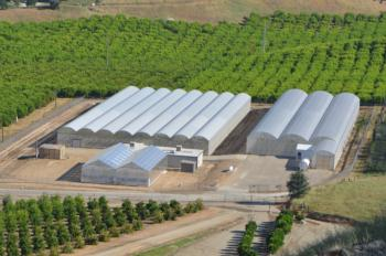 Citrus Clonal Protection Program facilities